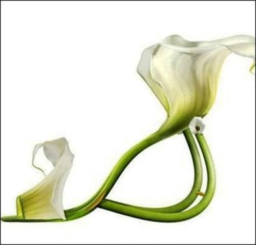 Интернетмагазин брендовой обуви ProvocanteShoesru